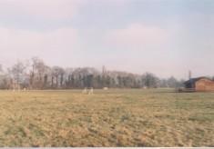 Recreation Ground (High Street)