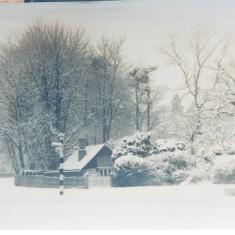 War Memorial winter | (Deacon)