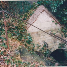 High St artesian well (Dr Young's old house) | (Deacon)