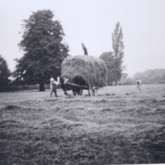 Baggot Hall farm early scene | (Deacon)