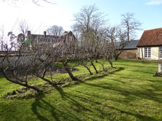 orchard by cart house | (Roadley)
