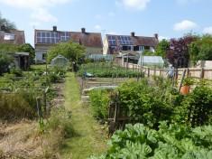 2016: Long veg garden of original council house