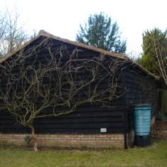 No 41 Church St New Barn 2015 | (Griffin)