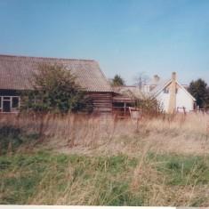 Date unknown. Manor Farm pigsties, No 96 behind. | (Deacon)
