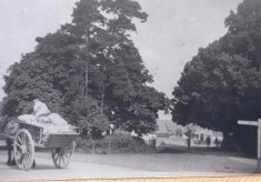 Harston Carriers C19th-early C20th