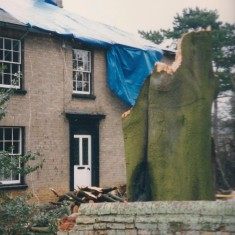 Beech Farm storm damage Jan 1998 | (Deacon)