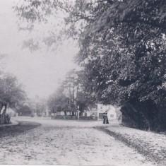 Swan Green 1900s | (Deacon)