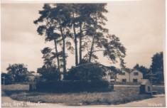Swan Green post 1921