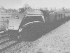1950s  The Mallard passing Harston
