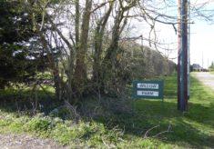 Willow Farm, Button End