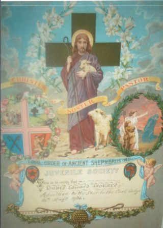 Certificate of Admission to lodge of Loyal Order of Ancient Shepherds | D Leonard