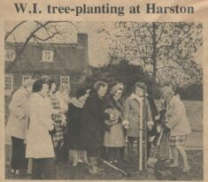 WI 'plant a tree in 73'