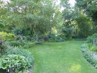 Kenterl back garden borders looking south 2018    (Roadley)