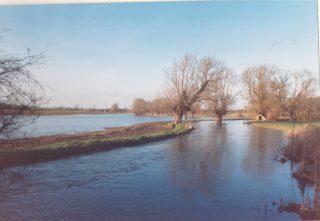 Rhee in flood 1988 | (Deacon)