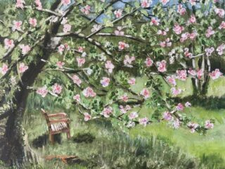 Community orchard | (J Richardson)