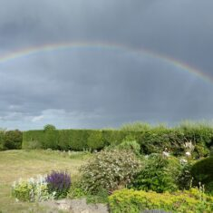 Rainbow over my garden | (M Hughes)
