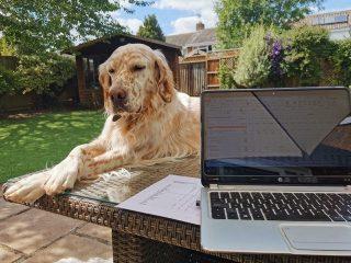 Working & relaxing in the garden | (Oatey)