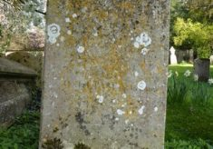 Gravestones - surnames beginning W - Y