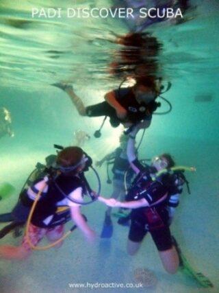 Cubs scuba diving